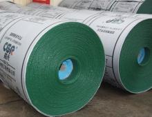 山东晨光胶带供应优质PVC/PVG整芯阻燃输送带皮带680S-2800S型号齐全
