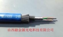 矿用钢丝铠装光缆MGTS33  24B